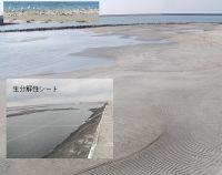 官民連携により早期造成を実現した阪南2区人工干潟