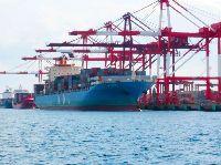 完成した神戸港ポートアイランド(第2期)地区 次世代高規格コンテナターミナル